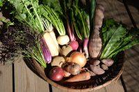 遊佐農場の野菜
